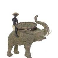 Homme sur éléphant