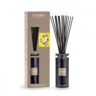 """Bouquet parfumé Initial """"Terre d'Agrumes"""" ESTEBAN"""
