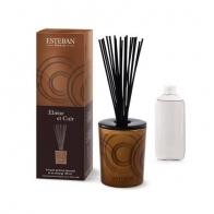 """Bouquet parfumé décoratif """"Ebène et Cuir"""" ESTEBAN"""